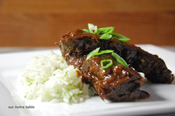 asian short ribs with green onion rice