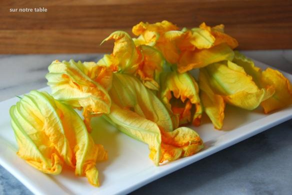 zucchini blossoms